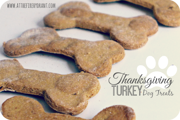 Thanksgiving Turkey Dog Treats - At The Fire Hydrant