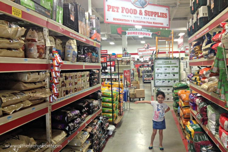 Tractor And Supply Dog Food