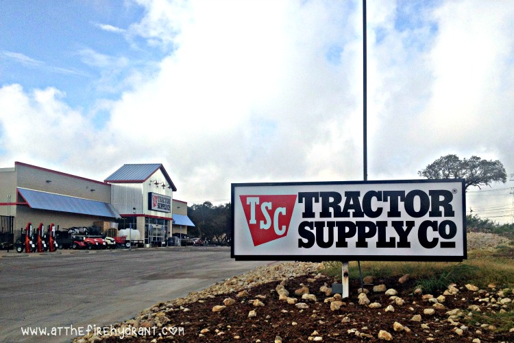 Can Dogs Go To Tractor Supply