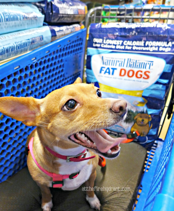 PetSmart Announces the Arrival of Natural Balance - At The Fire Hydrant #PetSmartStory