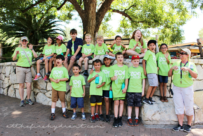 San Antonio Zoo Summer Camp - At The Fire Hydrant #ZooTroop 1